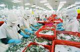 Tin tức - Saudi Arabia tạm dừng nhập khẩu thủy sản Việt Nam