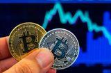 Tin tức - Giá Bitcoin hôm nay 8/2: Hồi phục thêm 400 USD