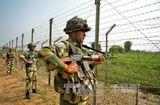 Tin tức - Ấn Độ: Đấu súng kéo dài hơn 30 giờ giữa Lục quân Ấn Độ và lực lượng khủng bố