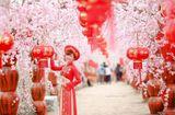 Tin tức - Điểm danh loạt địa điểm chụp ảnh Tết siêu đẹp ở Hà Nội