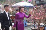 Tin tức - Dự báo thời tiết ngày 17/2: Bắc Bộ và Trung Bộ mưa nhỏ, Nam Bộ trời nắng đẹp