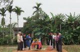Tin trong nước - Các nghi lễ đẹp trong dịp Tết cổ truyền của dân tộc Việt Nam