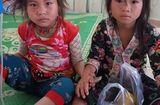 Tin tức - Hai bé gái ăn nhầm lá ngón nhập viện cấp cứu