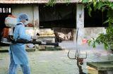 Tin tức - Xuất hiện ca tử vong đầu tiên trong năm do sốt xuất huyết ở Cà Mau