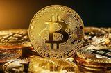 """Tin tức - Giá Bitcoin hôm nay 19/5/2018: Giảm sát mốc 8.000 USD trong thứ 7 """"đen tối"""""""