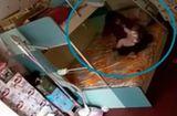 Tin tức - Video: Bảo mẫu dùng khăn trùm đầu, đánh đập bé 7 tháng tuổi liên tục