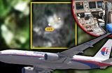Tin thế giới - Tiết lộ bất ngờ về khu rừng nơi được cho là phát hiện buồng lái máy bay MH370