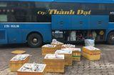 Tin trong nước - Bắt giữ gần 1 tấn thịt mèo không rõ nguồn gốc vận chuyển về Thái Bình