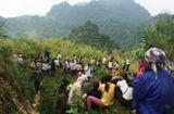 Tin tức - Tá hỏa phát hiện Chủ tịch Hội Nông dân xã treo cổ trên núi