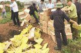 Thị trường - Tăng cường kiểm tra, kiểm soát chống buôn bán, vận chuyển gia cầm, trứng gia cầm nhập lậu
