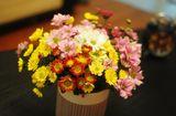 Tin tức - Những loài hoa đẹp và ý nghĩa không phải ai cũng biết trong ngày Tết