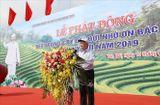 Tin tức - Tổng Bí thư, Chủ tịch nước Nguyễn Phú Trọng phát động