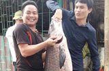 """Tin tức - Cận cảnh con cá trắm đen """"khủng"""" dài gần 1 mét, nặng hơn 33 cân sa lướt ngư dân"""