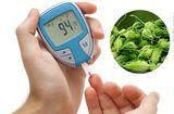Sức khoẻ - Làm đẹp - Biện pháp trị bệnh tiểu đường bằng mướp đắng rừng hiệu quả