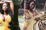 Tin tức giải trí - Tân Hoa hậu chuyển giới bị lên án vì diện bikini chụp hình với hổ