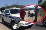 Tin trong nước - Bình Định: Xe CSGT va chạm với xe máy, 1 người tử vong