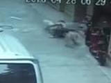 Video-Hot - Ông bố liều lĩnh chiến đấu với 3 con chó dữ để cứu con