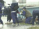 Cảnh sát Nhật xác định bé gái Việt tử vong do bị ngạt thở