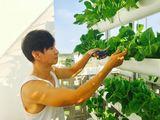 Ngắm vườn rau sạch trong biệt thự triệu đô của các sao Việt