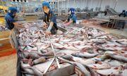 Đại gia thủy sản Hùng Vương thoái vốn, bán đất để duy trì hoạt động