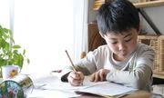 Cách rèn nếp tự học tập cho trẻ từ bậc tiểu học cha mẹ cần biết