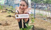 Hà Thu tạm dẫn đầu bình chọn tại Hoa hậu Trái Đất 2017
