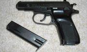 Tạm giữ nhân viên khách sạn tàng trữ súng trái phép