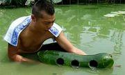 Người đàn ông thu món hời lớn khi khoét 3 cái lỗ trên quả bí đao rồi thả xuống nước