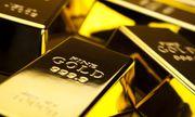 Giá vàng hôm nay 1/11: Vàng SJC quay đầu giảm 40 nghìn/lượng