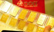 Giá vàng ngày 16/11: Vàng SJC nhích nhẹ 10 nghìn đồng/lượng