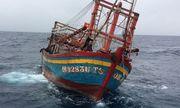 Nghệ An: Phát hiện tàu cá không người lái trôi dạt trên biển