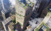 Người Nhật dự định xây nhà chọc trời bằng gỗ thế nào