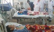 5 người nhập viện cấp cứu trong tình trạng nguy kịch sau khi nhậu cá nóc