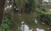 Hai học sinh chết đuối thương tâm dưới mương nước ở Hải Phòng