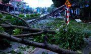 Gió lốc kèm mưa đá tàn phá nhiều nhà cửa ở Sơn La, Bắc Kạn