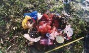Vụ ''trấn yếm'' mộ bằng quần lót sơn đỏ ở Huế: Đã xác định được nghi phạm