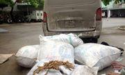 Gần nửa tấn ba kích không rõ nguồn gốc từ Trung Quốc: Dùng trộn vào ba kích Quảng Ninh để bán