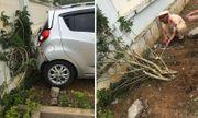 Thông tin bất ngờ vụ cô giáo lùi ôtô ở sân trường khiến 2 học sinh thương vong
