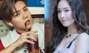 Hé lộ sự nghiệp thành công của 8 Idol sau khi rời SM Entertainment