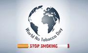 """""""NO SMOKING"""" ngày thế giới không thuốc lá và bài thuốc cai thuốc lá hiệu quả"""