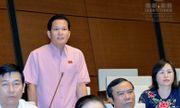 ĐBQH Bùi Sỹ Lợi: Bác sĩ Hoàng Công Lương có thể vô tội