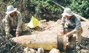 Quảng Trị: Hủy nổ quả đạn pháo nặng gần 1 tấn được dân phát hiện
