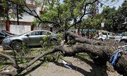 Ấn Độ: Mưa bão khiến hơn 30 người thiệt mạng