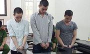 3 thanh niên lĩnh 40 năm tù vì cưỡng bức tập thể thiếu nữ