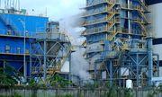 Đại gia xuất nhập khẩu tái khởi động nhà máy