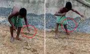 Video: Cái kết không thể nào nhịn cười cho cậu bé thích trêu rắn