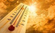 Những thực phẩm ngăn ngừa đột quỵ do nắng nóng