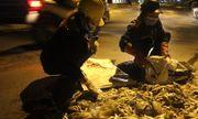 Hà Nội: Hàng trăm công nhân trắng đêm vớt cá chết ở hồ Tây
