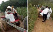 Video: Chú rể Nghệ An đón cô dâu về dinh bằng xe trâu