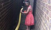 Video: Bé gái 5 tuổi